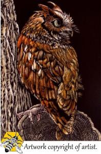 screech owl pardy